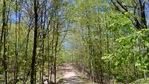 Forest Glade Park  at 1381 Kathleen Crescent, Iroquois Ridge South, Oakville