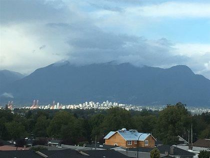 262234092-11 at 308 - 4818 Eldorado Mews, Collingwood VE, Vancouver East