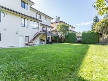 Backyard-1 at 9031 Briar Road,
