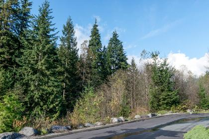 Path at 87 - 3295 Sunnyside Road, Anmore, Port Moody