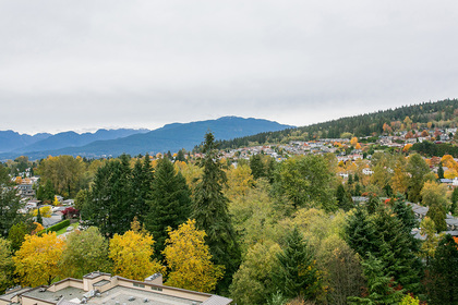 view-n-shore-mountain at #1606 - 7321 Halifax Street, Simon Fraser Univer., Burnaby North