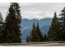 image-261869742-12.jpg at 614 - 1500 Ostler Court, Indian River, North Vancouver