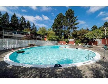 Outdoor pool at 801 Westview Crescent, Upper Lonsdale, North Vancouver