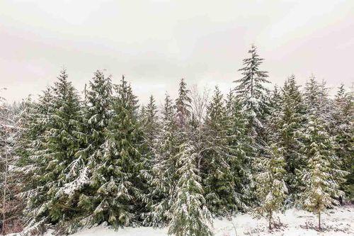 16219172f16a56f99ff30b7a65c5c2b7 at 17 - 1026 Glacier View Drive, Garibaldi Highlands, Squamish