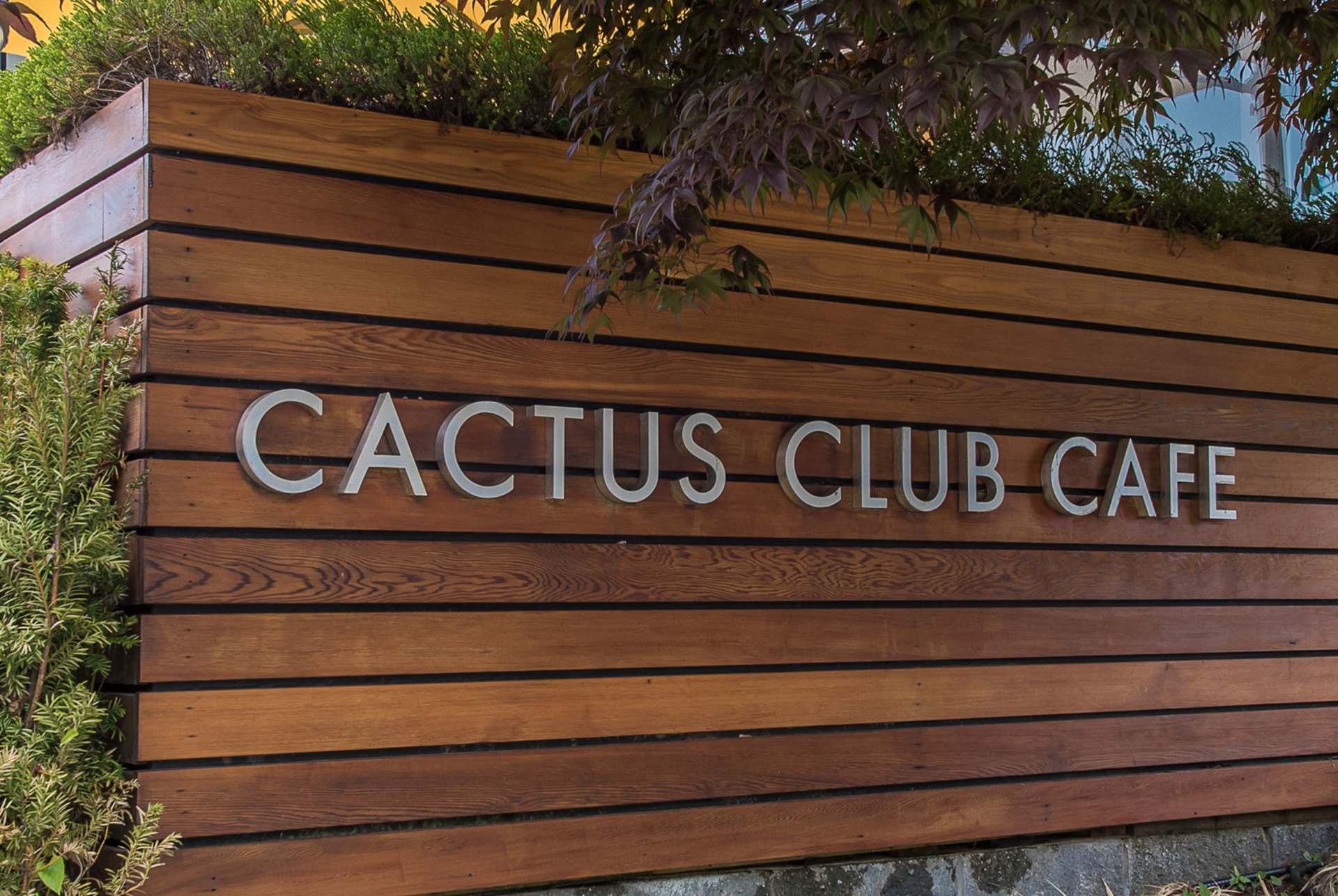 cactus-club-3a4409d480aeea3460d1b77b50cb96ca at  , Brentwood Park, Burnaby North