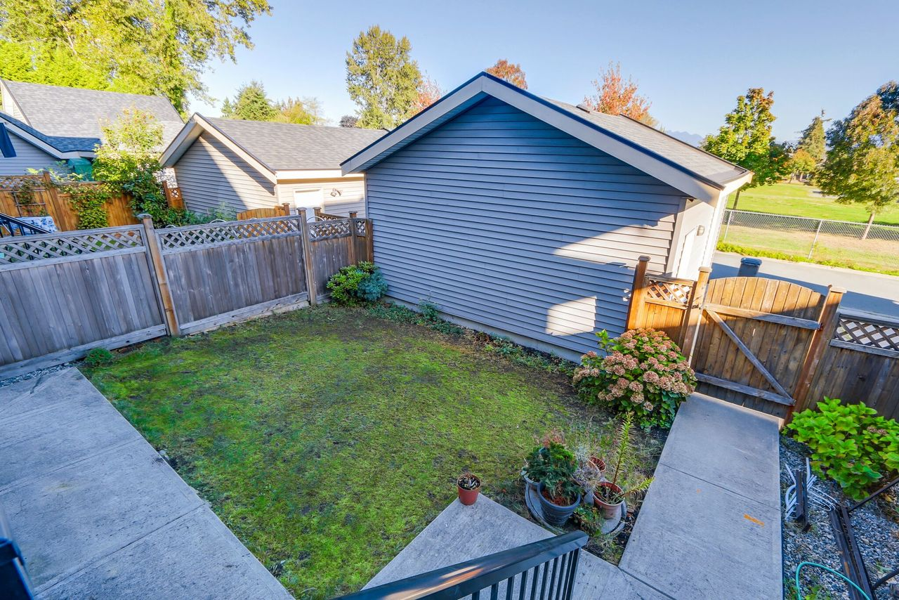 13125 108 Ave - Back yard at 13125 108 Avenue, Whalley, North Surrey