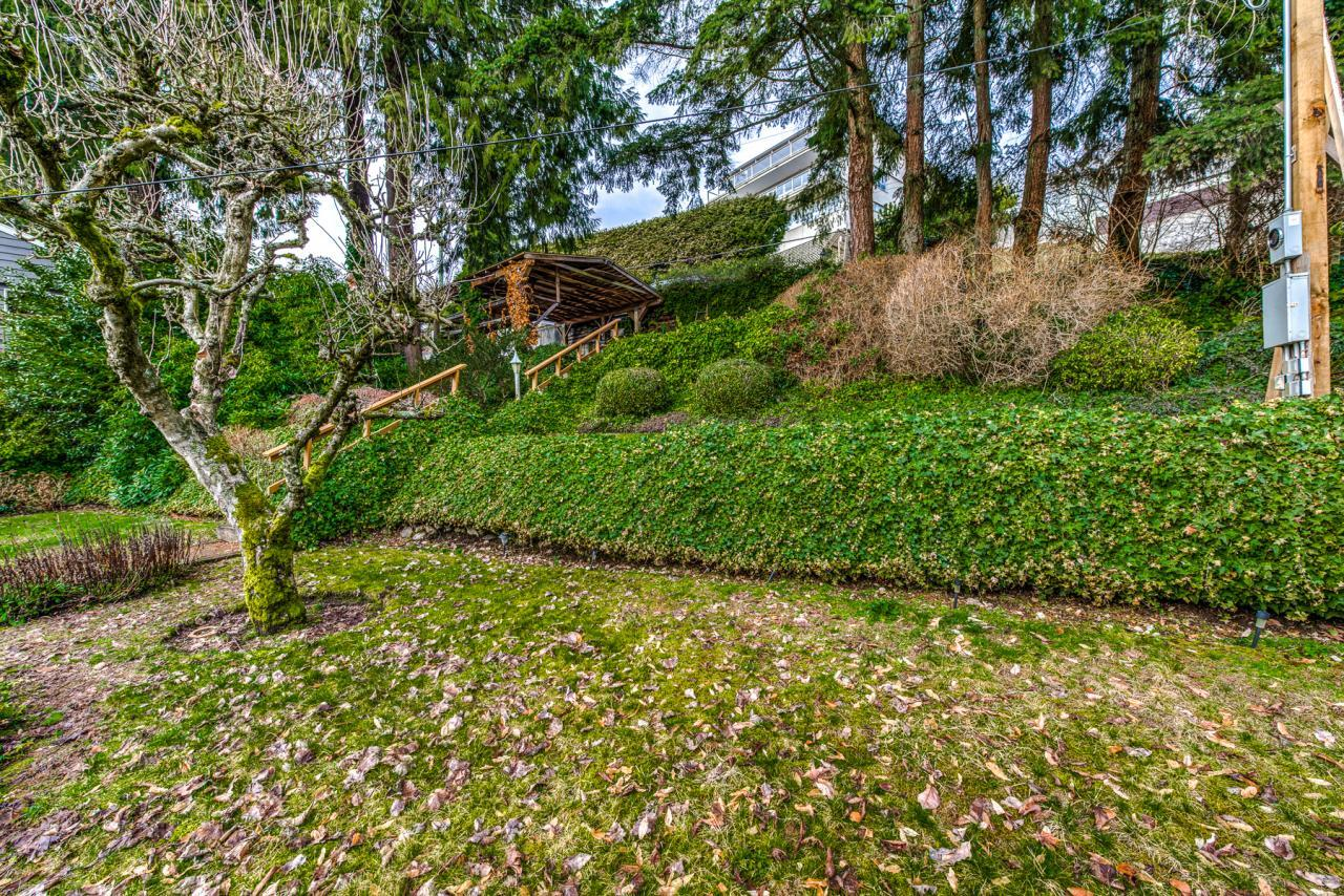 945 Keith Road - West Vancouver- Lush green front yard at 945 Keith Road, Sentinel Hill, West Vancouver