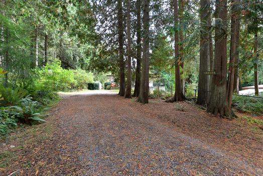 dsc_8914 at 1140 Flume Road, Roberts Creek, Sunshine Coast