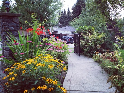 Landscaping at 1 - 239 Guilford Drive, North Shore Pt Moody, Port Moody