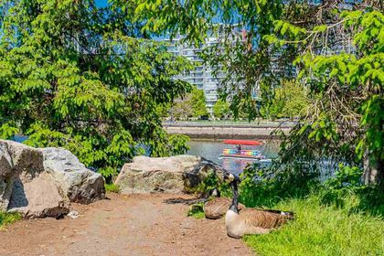 1708-columbia-street-mount-pleasant-vw-vancouver-west-35 at 1702 - 1708 Columbia Street, Mount Pleasant VW, Vancouver West