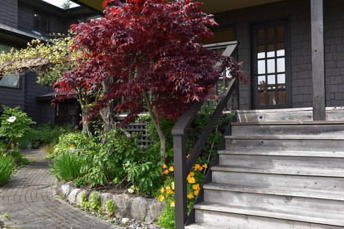 Guest house steps at 52 Clark Road, Gibsons & Area, Sunshine Coast