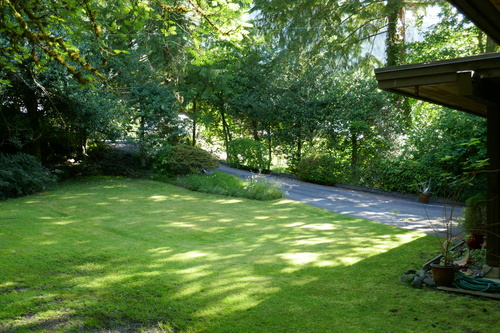 937 Montroyal Blvd., North Vancouver - Front yard at 937 Montroyal Blvd. , Canyon Heights NV, North Vancouver