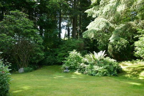 937 Montroyal Blvd., North Vancouver - Rear yard at 937 Montroyal Blvd. , Canyon Heights NV, North Vancouver