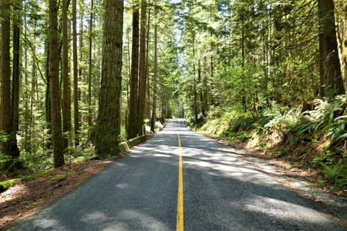 p1010690 at 5786 Sunshine Falls Lane, Woodlands-Sunshine-Cascade, North Vancouver