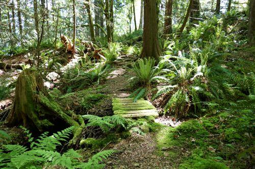 p1010696-001 at 5786 Sunshine Falls Lane, Woodlands-Sunshine-Cascade, North Vancouver