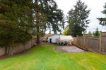 Backyard at 2687 Carnation Street, Blueridge NV, North Vancouver
