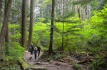 Lynn Canyon Park at 2687 Carnation Street, Blueridge NV, North Vancouver