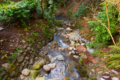 creek at 2475 Palmerston Avenue, Dundarave, West Vancouver
