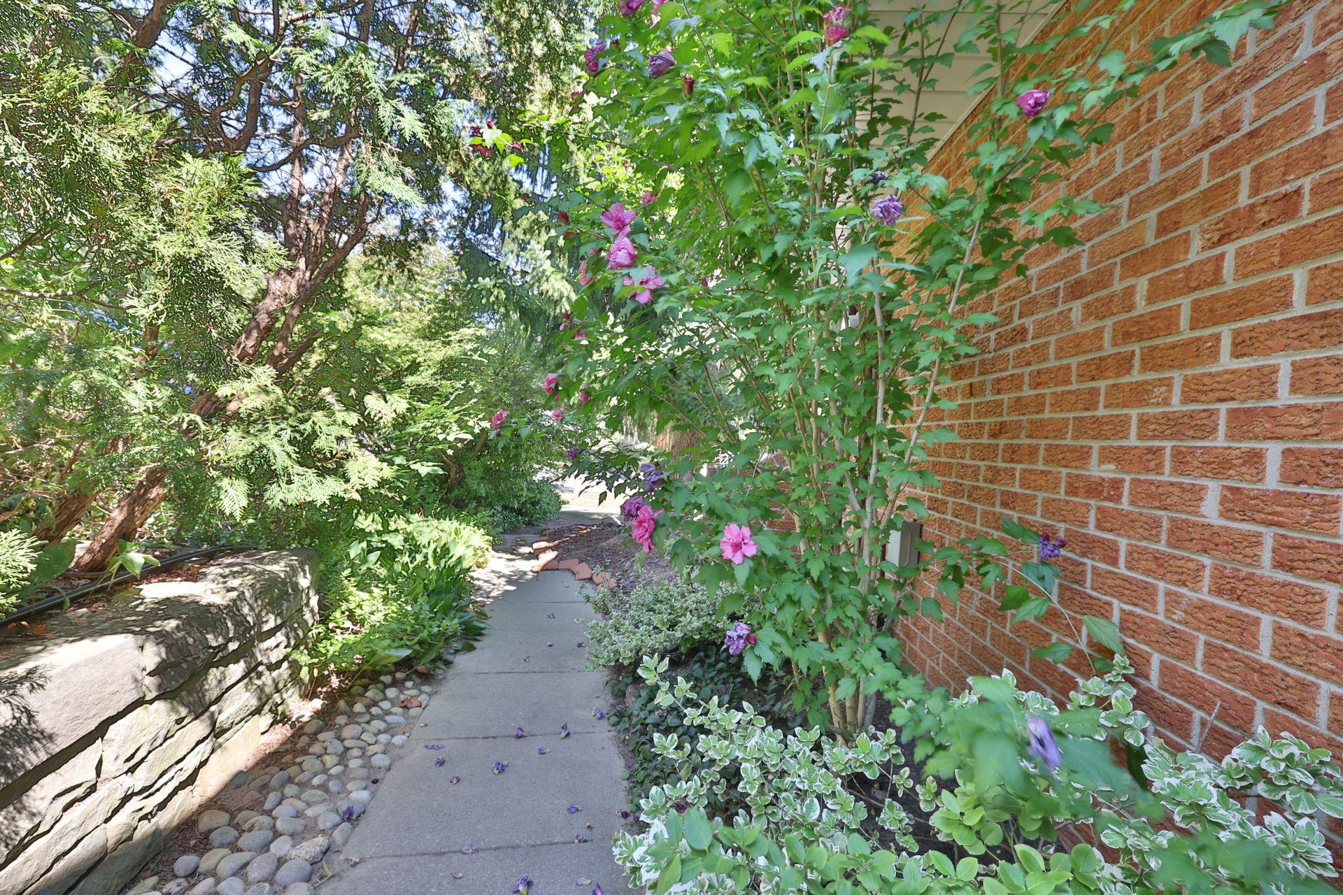 Side Yard/Gardens at 2205 Elmhurst Avenue, Oakville