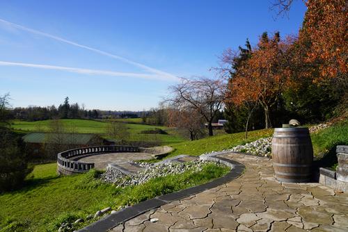 view-west at  Blackwood Lane Vineyards & Winery,