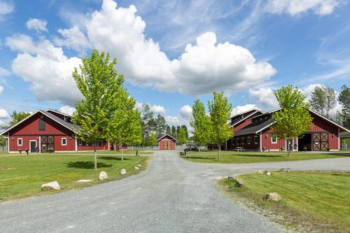 high-point-equestrian-centre-360hometours-26 at High Point Equestrian Centre -  South Langley,