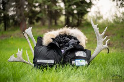 65-rycon-drive-my-backyard-tours-6 at  My Backyard Tours, Yellowknife