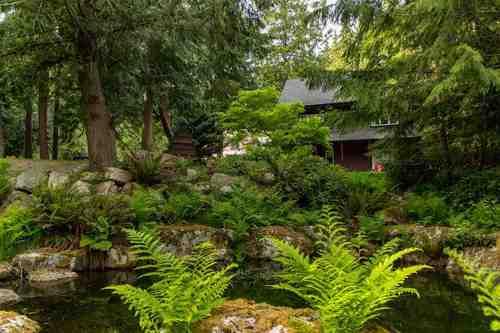 3144-linwood-road-roberts-creek-sunshine-coast-30 at 3144 Linwood Road, Roberts Creek, Sunshine Coast