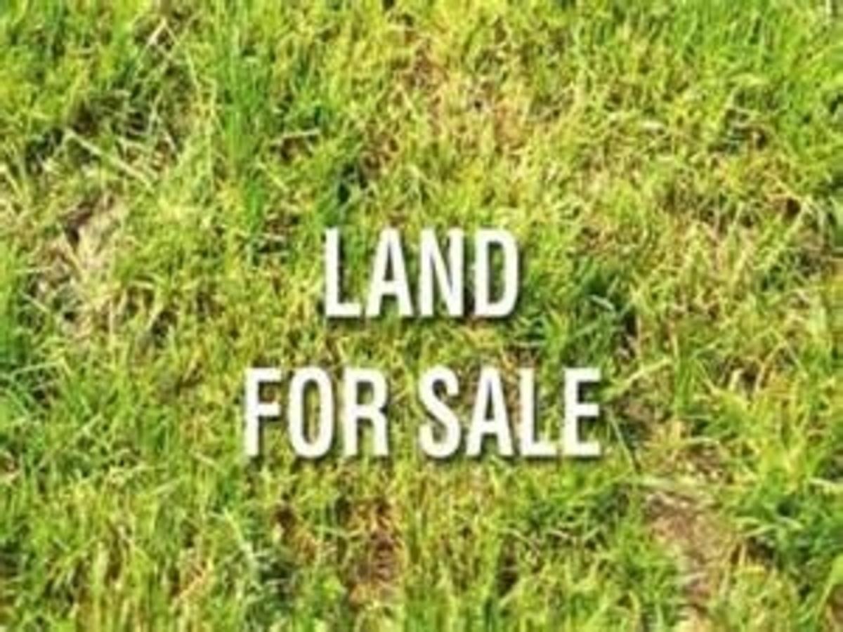 1041A Quadling (land) (land), Maillardville, Coquitlam