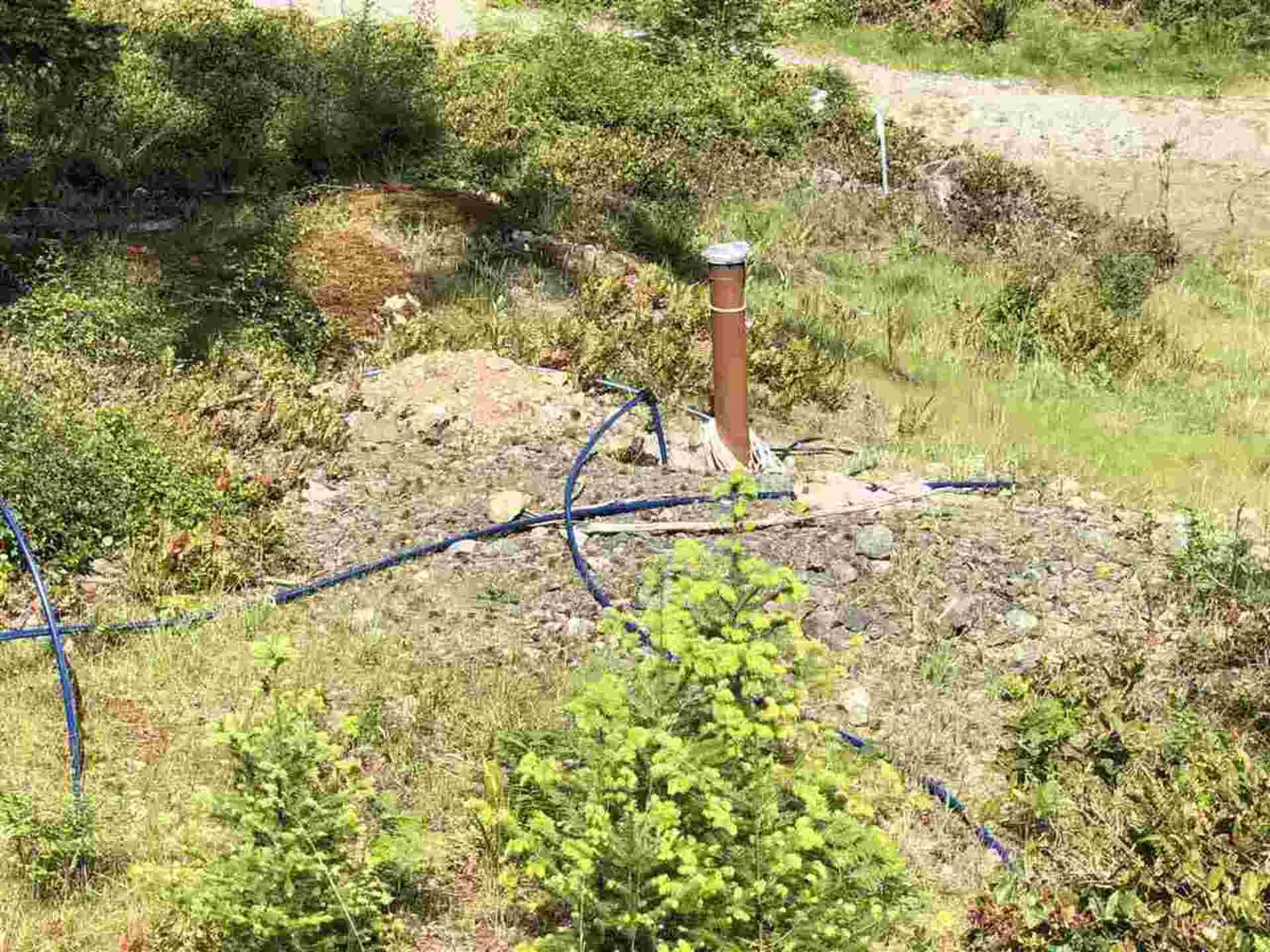 fircom-plateau-street-gambier-island-sunshine-coast-14 at Lot 16 -  Fircom Plateau Street, Gambier Island, Sunshine Coast