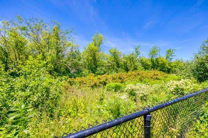 Backyard- 73 North Park Blvd, Oakville- Elite3 & Team at 73 North Park Boulevard, Rural Oakville, Oakville