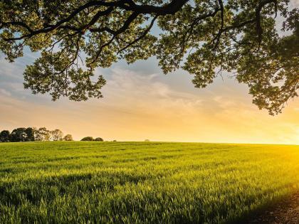 Sturgeon County Acreages
