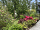 1014-west-keith-rd-backyard-5 at 1014 W Keith Road, Pemberton Heights, North Vancouver