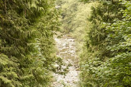14230-silver-valley-17 at 14230 Silver Valley, Silver Valley, Maple Ridge