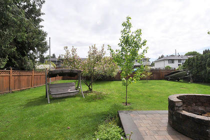 back-yard at 21682 125 Avenue, West Central, Maple Ridge