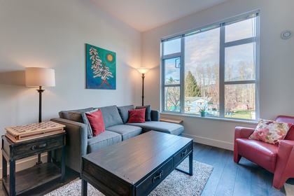38202_5 at 206 - 2393 Ranger Lane, Riverwood, Port Coquitlam