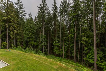 Peace and Quiet at 1408 Crystal Creek Drive, Anmore, Port Moody