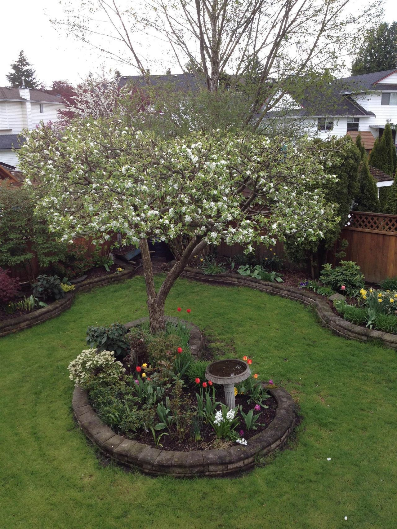 8901-214b-street-walnut-grove-langley-35 at 8901 214b Street, Walnut Grove, Langley