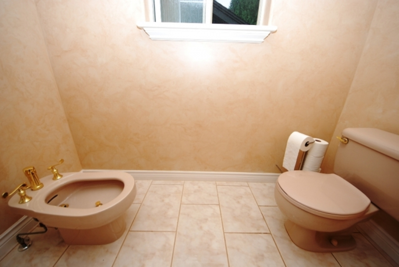 pmastertoilet.jpg at 430 Fairway Street, Coquitlam West, Coquitlam