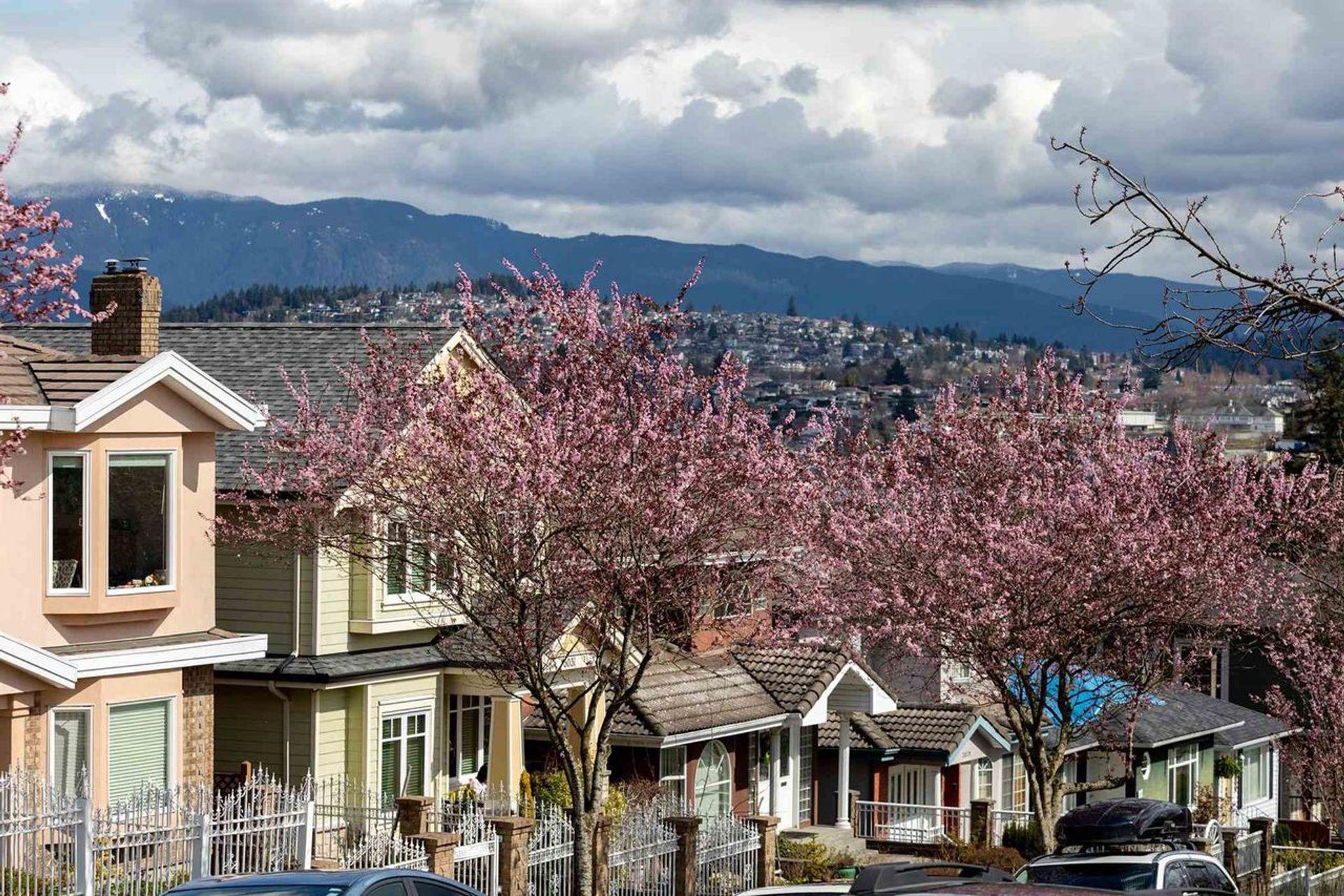 3498-napier-street-renfrew-ve-vancouver-east-04