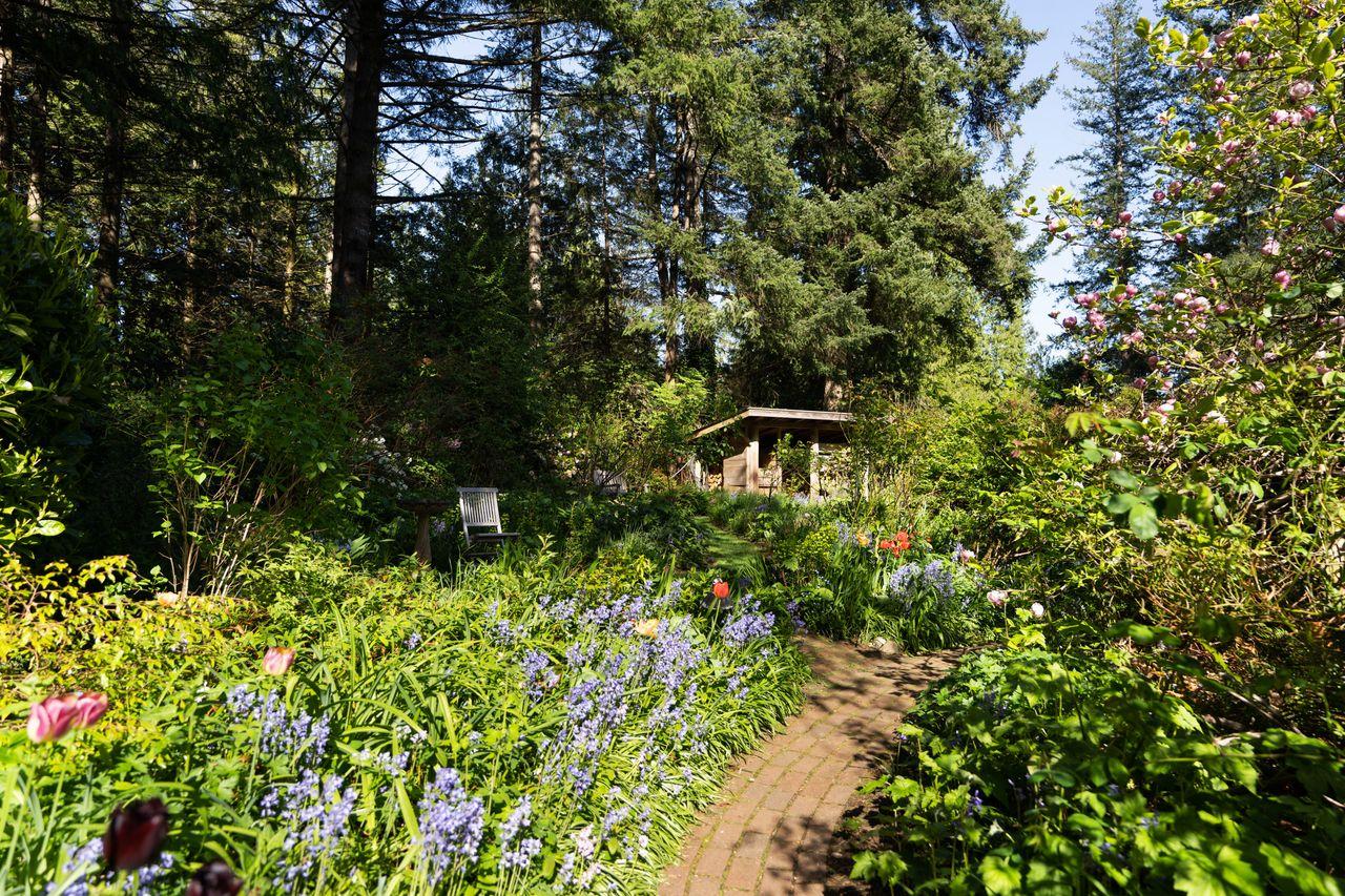 1273-hiking-trail-0107 at 1273 Hikers Trail, Bowen Island