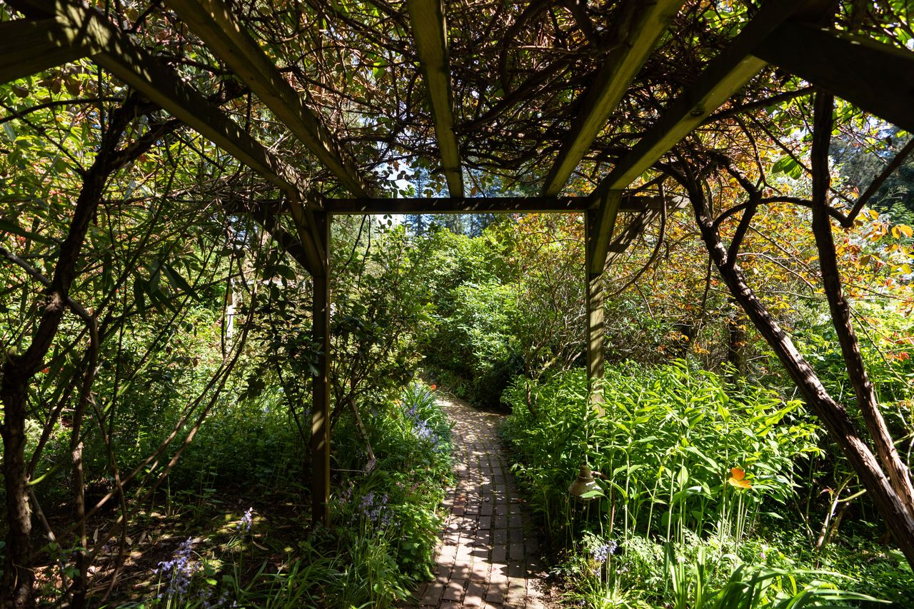 1273-hiking-trail-9818 at 1273 Hikers Trail, Bowen Island