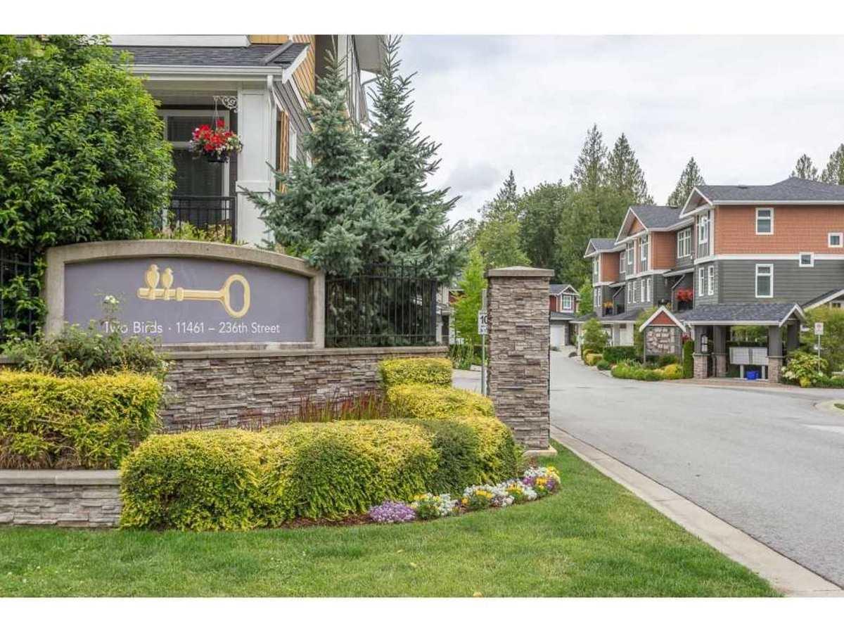 11461-236-street-cottonwood-mr-maple-ridge-01 at 16 - 11461 236 Street, Cottonwood MR, Maple Ridge