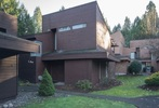 image-262037955-1.jpg at 34 - 19696 Hammond Road, South Meadows, Pitt Meadows
