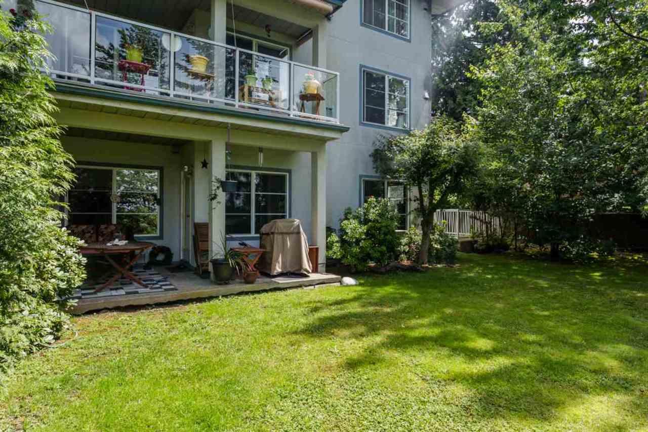 image-262098062-18.jpg at 105 - 11519 Burnett Street, East Central, Maple Ridge