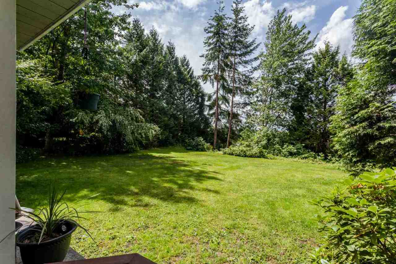 image-262098062-19.jpg at 105 - 11519 Burnett Street, East Central, Maple Ridge