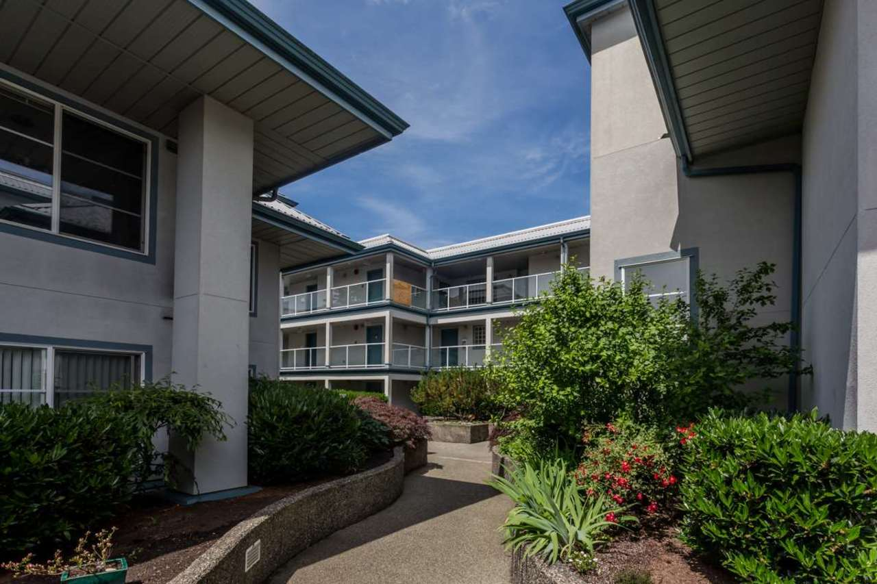 image-262098062-2.jpg at 105 - 11519 Burnett Street, East Central, Maple Ridge