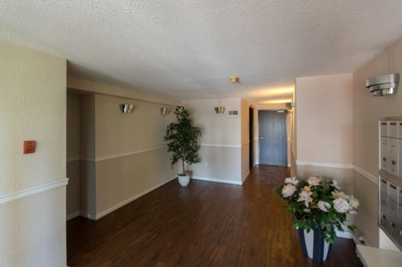 image-262106374-17.jpg at 207 - 119 Agnes Street, Downtown NW, New Westminster
