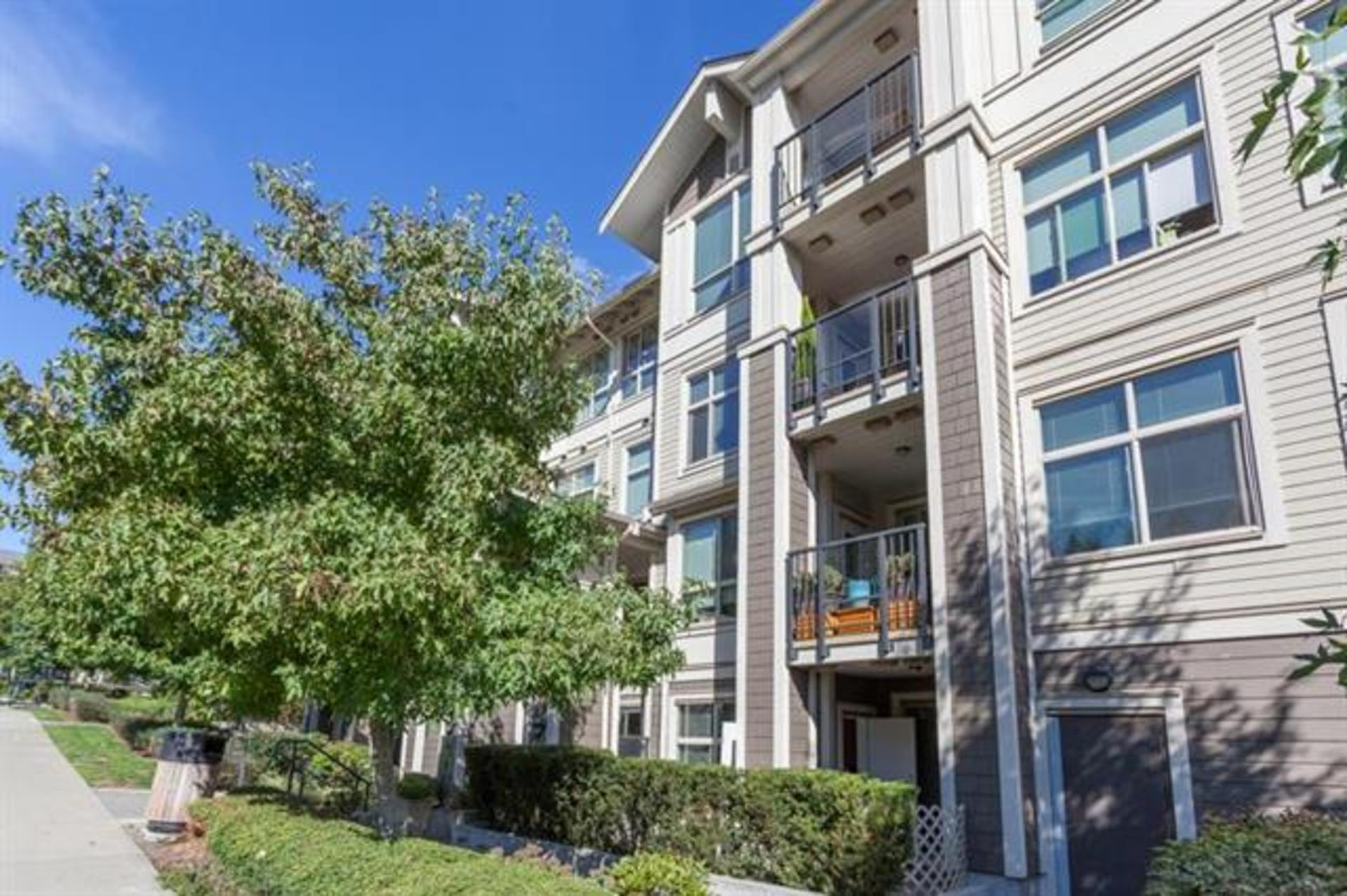 101 - 255 Ross Drive, Fraserview NW, New Westminster