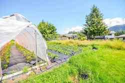 1211-parkwood-place-brackendale-squamish-15 at 1211 Parkwood Place, Brackendale, Squamish