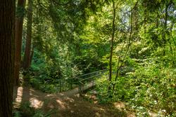 Hastings Trail at 1497 Harold Road, Lynn Valley, North Vancouver